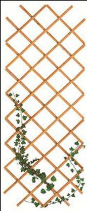 Immagine di Estensibile bamboo, cm.90x240
