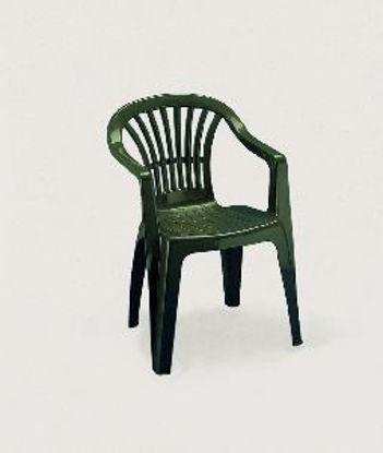 Immagine di sedia monoblocco altea, impilabile in polipropilene, schienale basso, colore verde, dimensioni cm. 56x54 h. 80, peso kg. 2,75